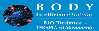 Logo Body Intelligence